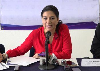 Secretaria de Economía y del Trabajo, Ana Cecilia Rodríguez González